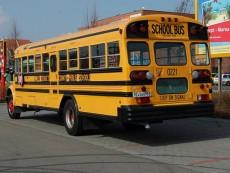 skolni-bus